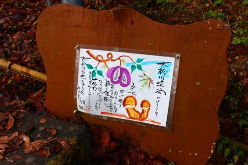 大柳川渓谷8