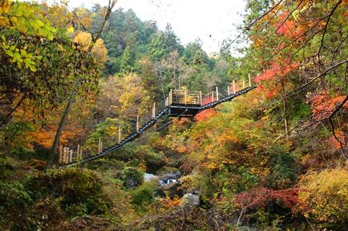 大柳川渓谷11