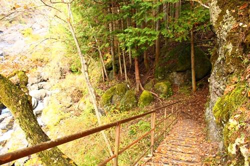 大柳川渓谷18