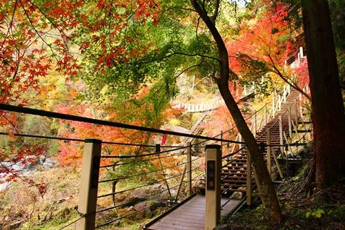大柳川渓谷22