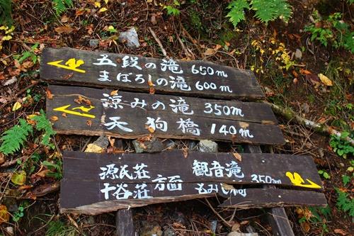 吊り橋コースへ6