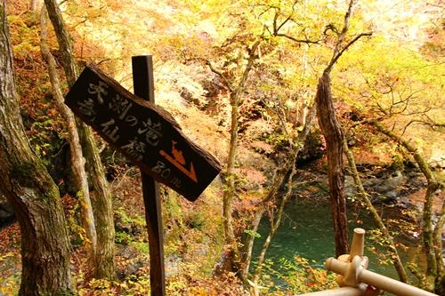 吊り橋コースへ14