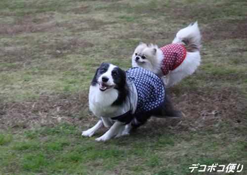 20151127 抱っこ19
