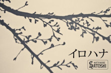 SINGER SONG 渡辺誠志の日記