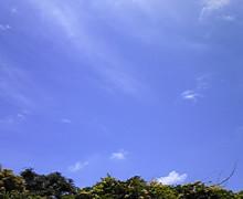 SINGER SONG 渡辺誠志の日記-100630_110651.jpg