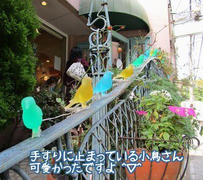 小鳥カフェ玄関2