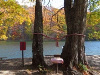 紅葉2015七ヶ宿3長老湖縁結の木