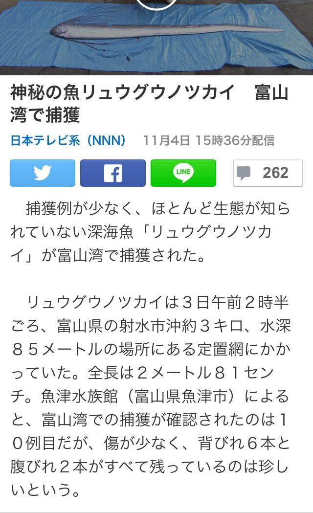 ブログ関連②