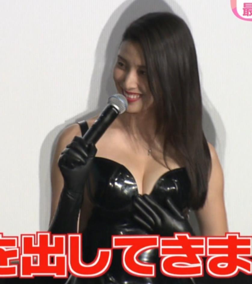 橋本マナミ 画像2