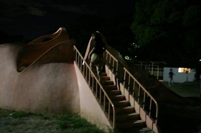 美乳な素人女性が夜の公園で野外露出して男達にマンコ見せちゃってる画像 2