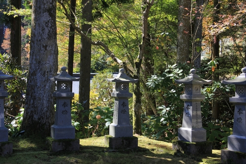 kouyou-1026-8384.jpg