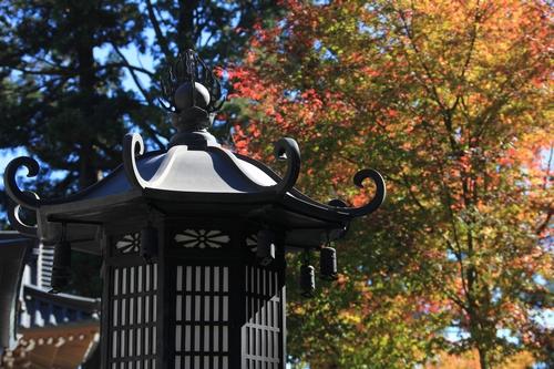 kouyou-1026-8390.jpg