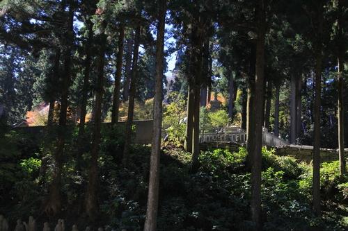 kouyou-1026-8424.jpg