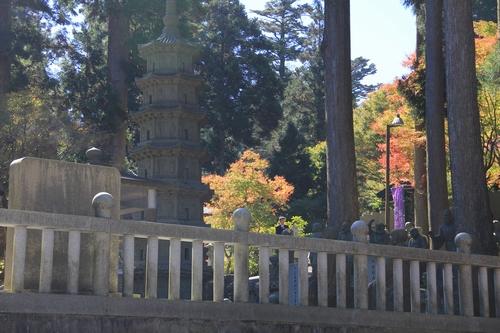 kouyou-1026-8432.jpg