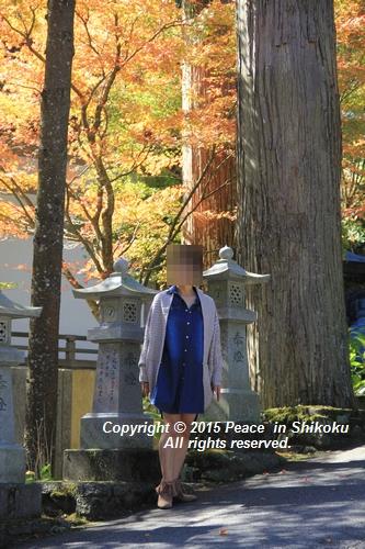 kouyou-1026-8445.jpg