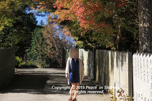 kouyou-1026-8450.jpg