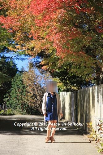 kouyou-1026-8452.jpg