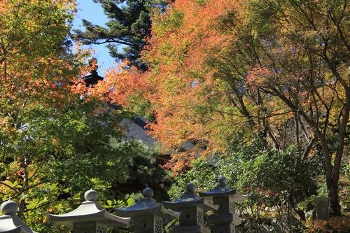 kouyou-1026-8453.jpg