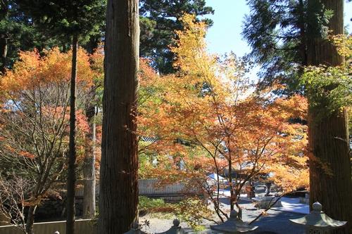 kouyou-1026-8456.jpg