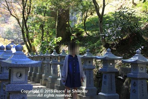 kouyou-1026-8577.jpg