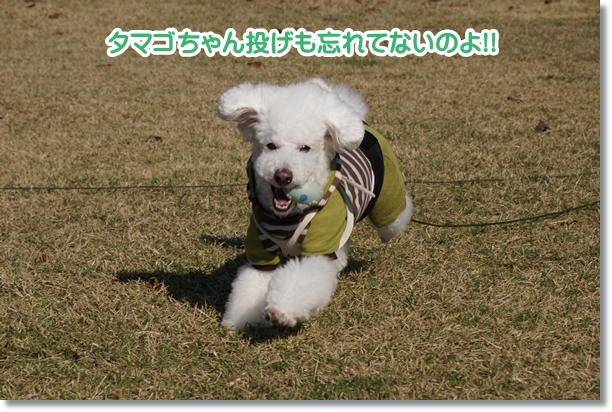 ご機嫌な笑顔4