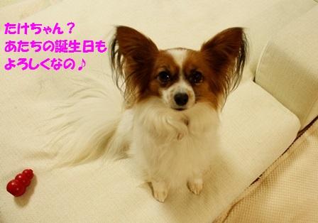 _MG_3653.jpg
