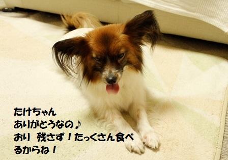 _MG_3721.jpg