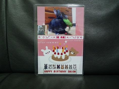 誕生日カード1114