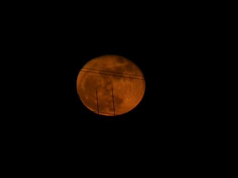 赤い月1127