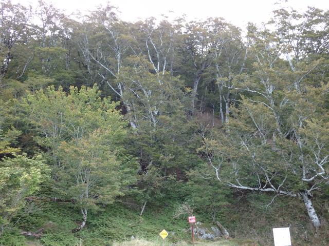 徳島のヘソの近く