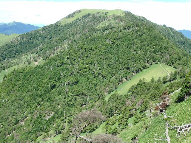剣山の南東斜面