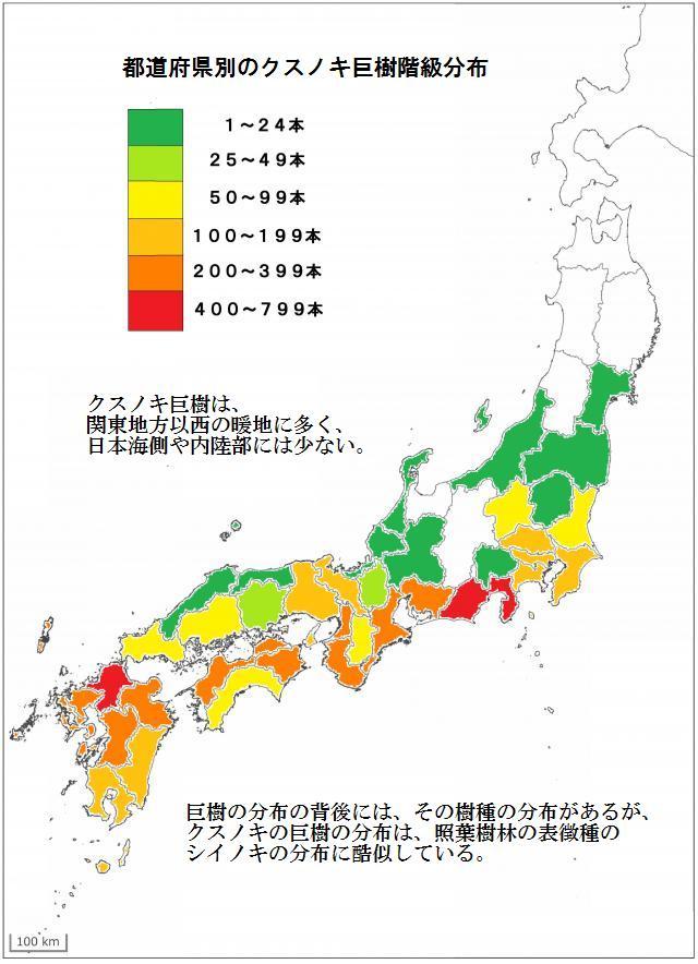 都道府県別クスノキ巨樹の階級分布