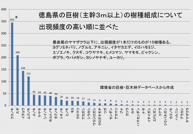 徳島県の巨樹の出現頻度順