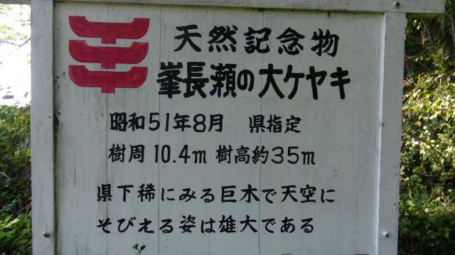 徳島県の天然記念物