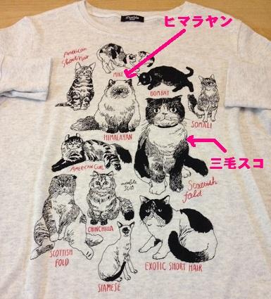 猫Tシャツ2