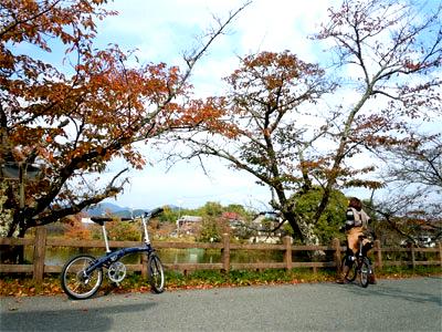 20161101suzume006.jpg