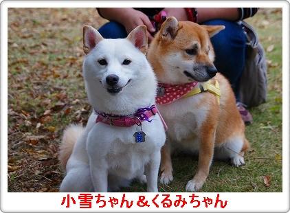 小雪&くるみちゃん