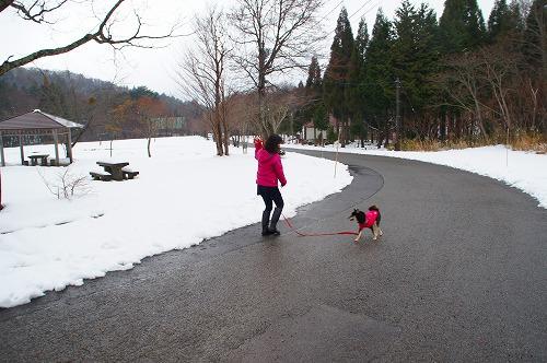雪遊び (13)