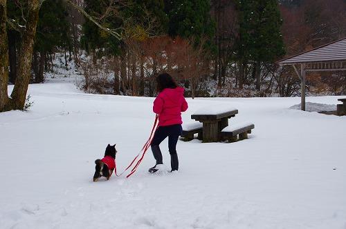雪遊び (14)