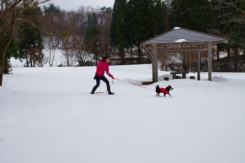 雪遊び (15)
