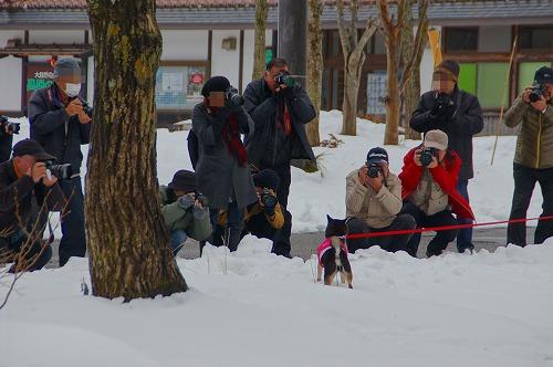 雪遊び (24)