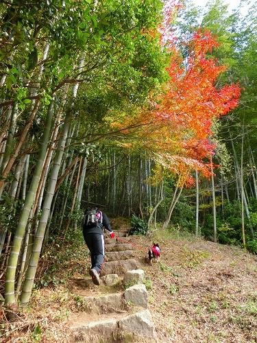 古鷹山登山 (2)