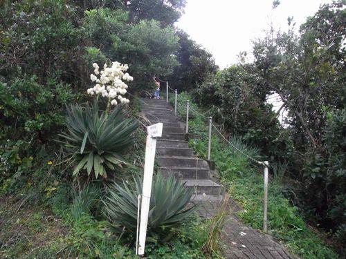 州崎灯台2