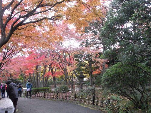 池田山公園1