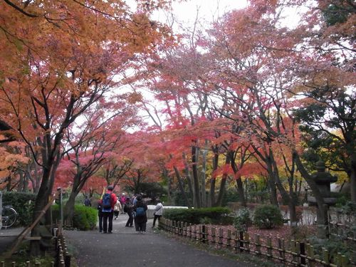 池田山公園2
