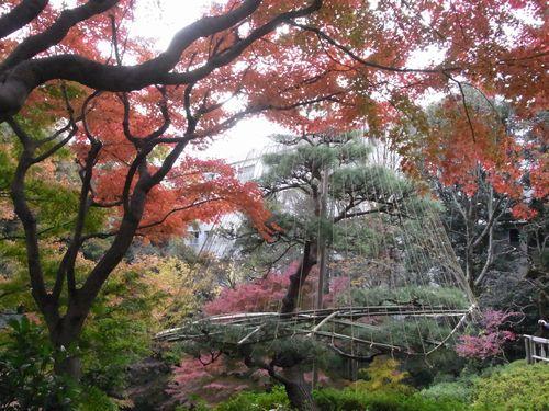 池田山公園4