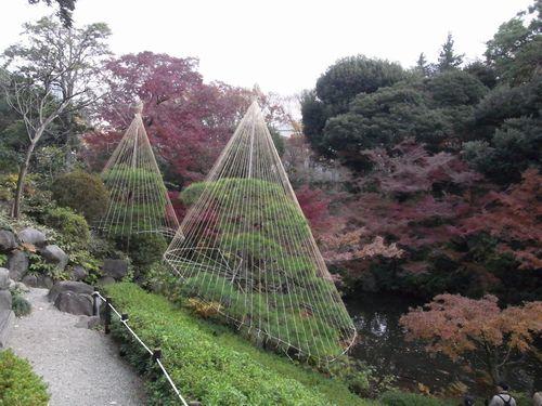 池田山公園5