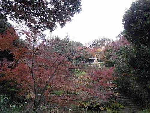 池田山公園9