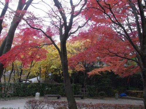 池田山公園11
