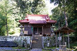 151006天城神社のシイ⑥